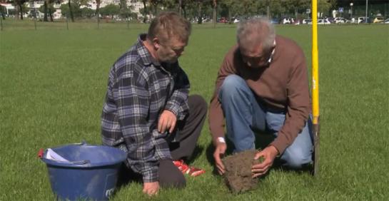 JL-Goxes Rangueil suivi entretien pelouse